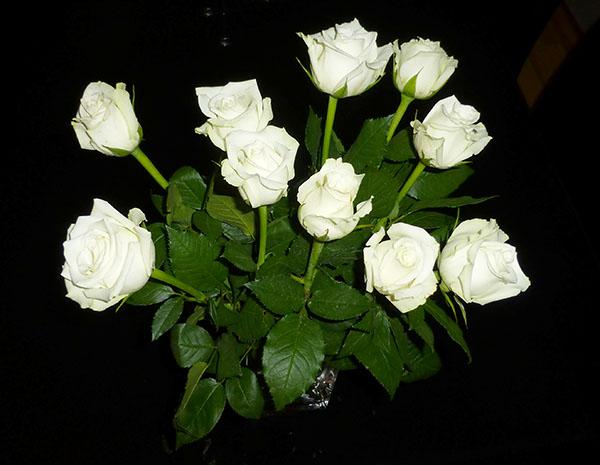Vakre hvite roser til meg!