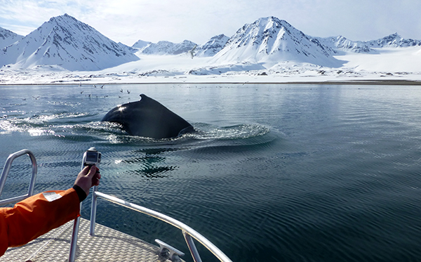 dag10-frode-og-hvalen