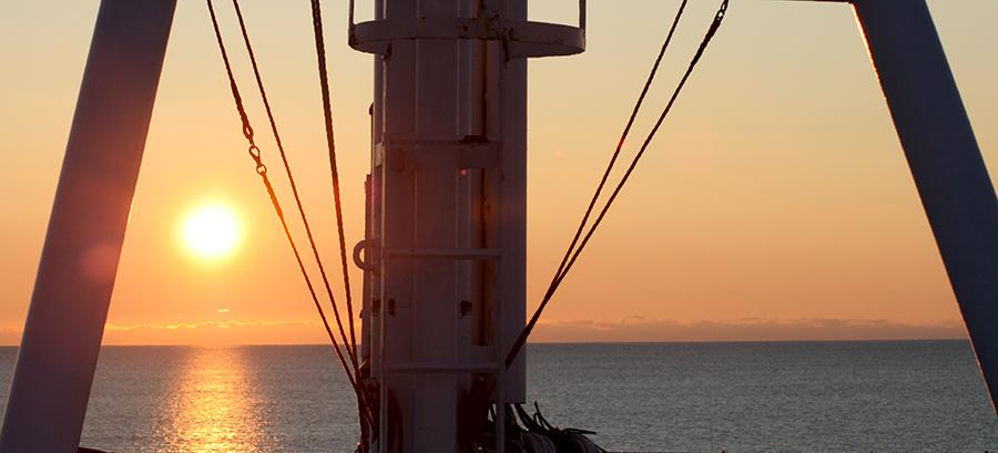 dag28-taket-solnedgang